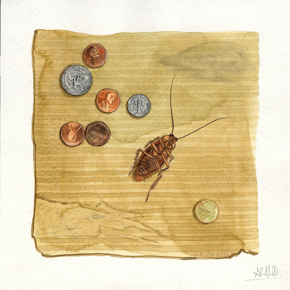 """Forty cents""  2015  Watercolor on paper  9""x9""  Available"