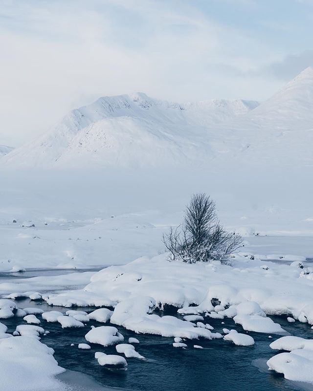 More wintry madness from Rannoch Moor in Scotland . . . #highlandcollective #scenicbritain #hiddenscotland #uk_shooters #explore_britain #sonyalpha #scottishhighlands #alphacollective #forgeyourownpath #britains_talent #adventurelife #in2nature #capturingbritain #photosofbritain #thevisualscollective #scotland #lovegreatbritain #ukpotd #modernoutdoors #folkscenery #visitscotland #getoutstayout #keepitwild #theoutbound #landscapelovers #stayandwander #ourplanetdaily #wildernessculture #exploretocreate #exploremore