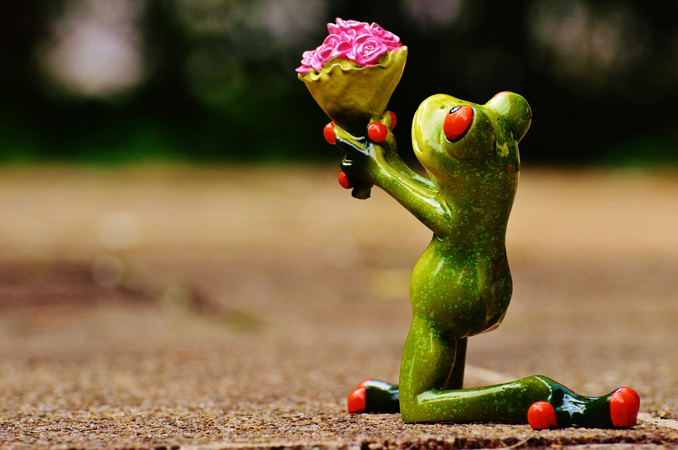 pleading frog.jpg