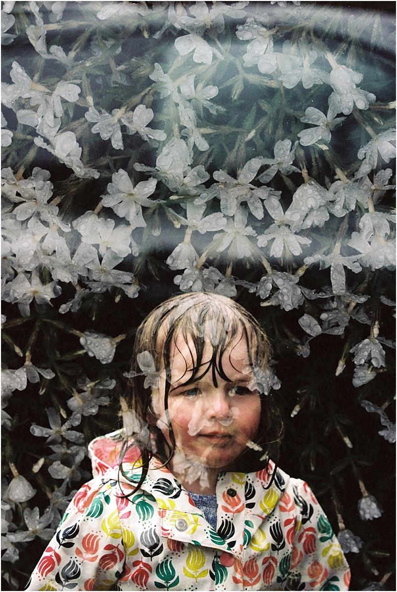 Rain & Flowers (Canon 1v :: Portra 400)   111/366