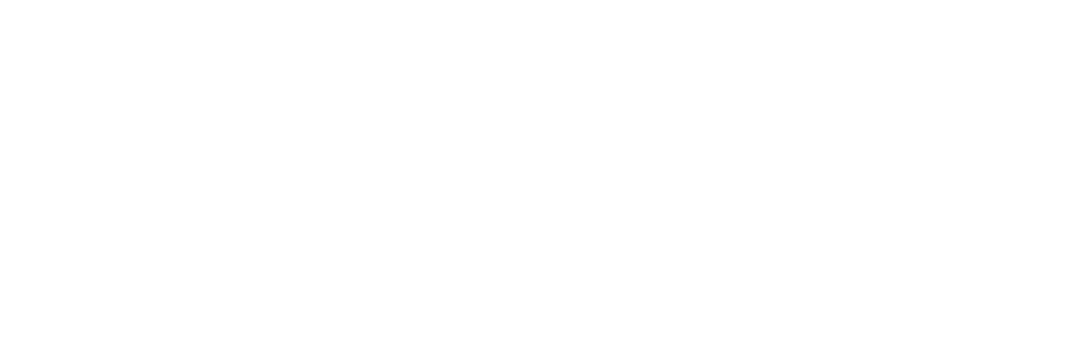 SaySo_logo.png