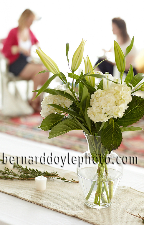 Capturing the ambience of this Amana press event     ©2011   www.bernarddoylephoto.com