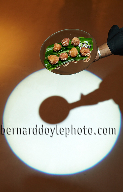 Maytag's 'circle' theme denoted in by catered delights from The Good Knife at their event at Metropolitan Pavilion    ©2011   www.bernarddoylephoto.com