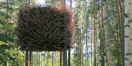 "Incredible ""Bird's Nest Tree House"" via Toxel.com- ingenious windows obscured from view by twigs and retractable staircase"