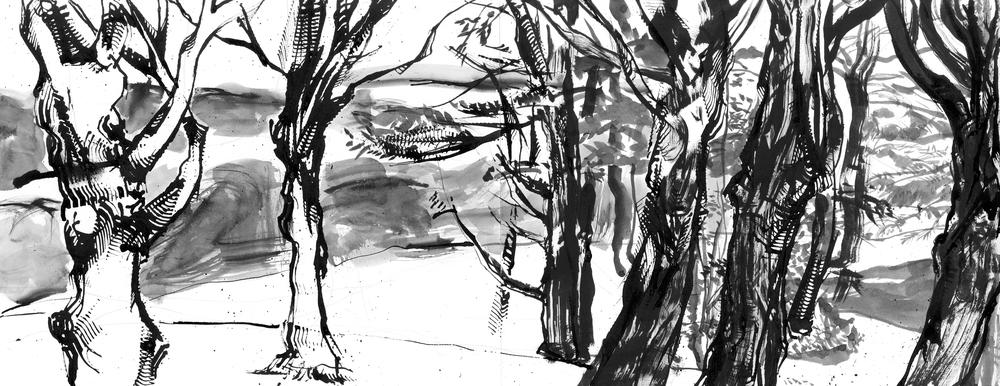 Trees hudson1.jpg