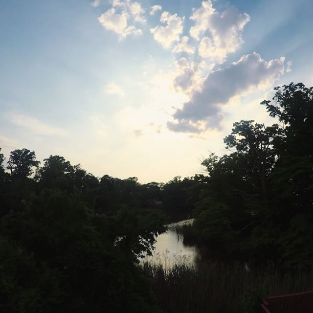 Been sitting on these for a few days now...In all the chaos of moving, I managed to get this #timelapse shot from our back deck and grab a few pics of one of our new neighbors. . . . #GoPro #Sunset #Panasonic #gh4 #panasonicgh4 #turtle #turtles #lake #treasurelake #cliffwoodbeach #keyport