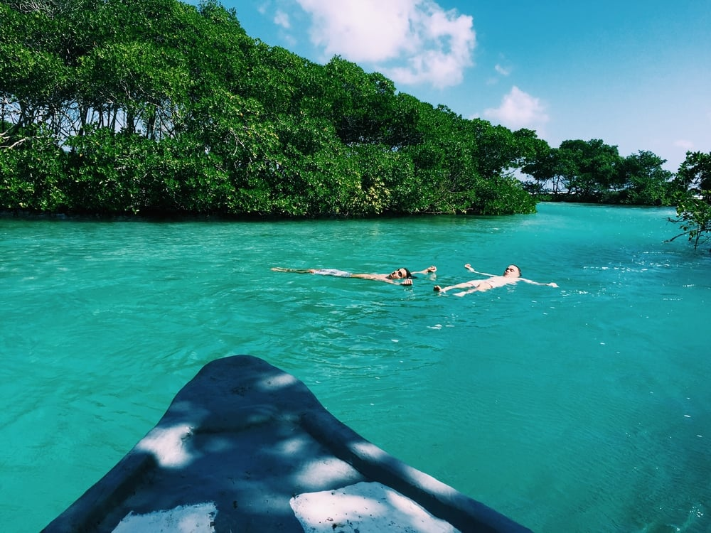 The current was so strong and fast in the mangroves we hopped out of the boat and floated for a while. It seriously felt like a magical lazy river.