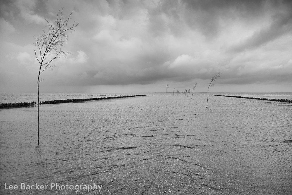 Wadden Sea, Denmark