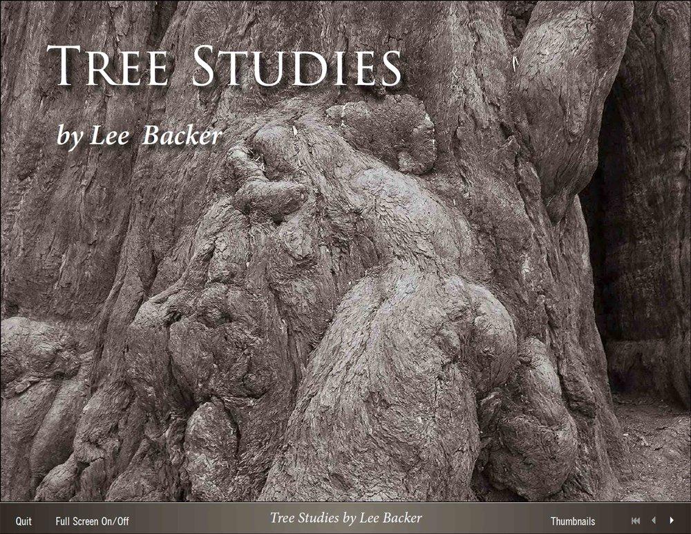 TreeStudiesPDFcover.jpg