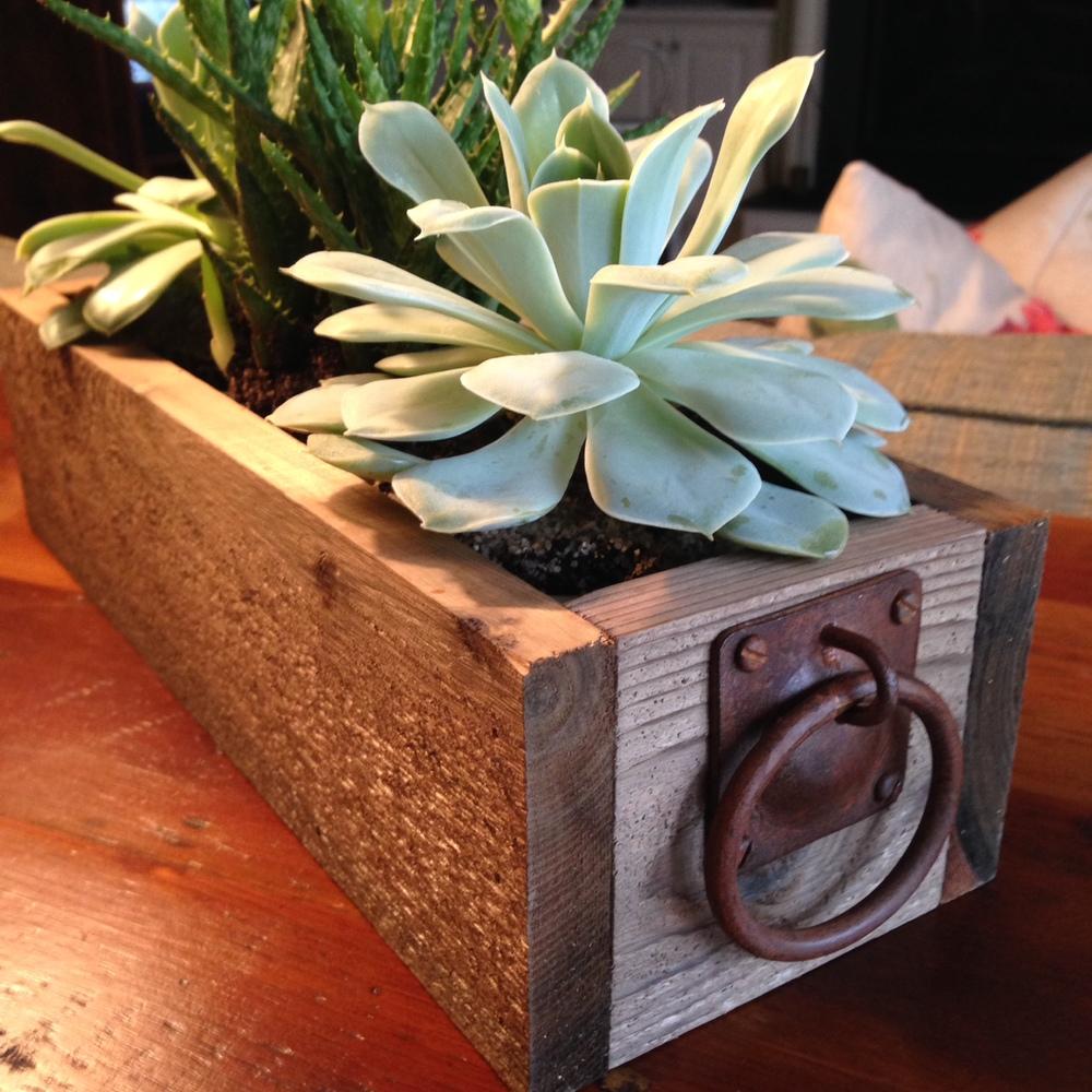 Cedar succulent planter with iron handles