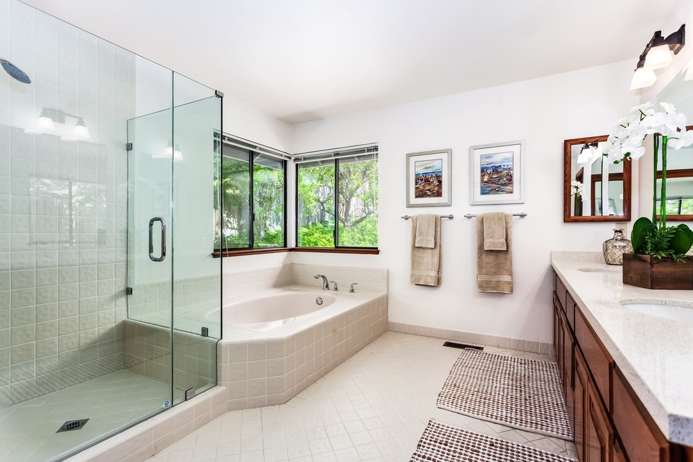 Master Tub, Shower and Vanity - Light & Bright!