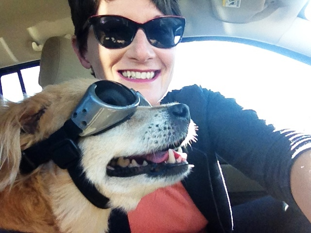 Future's So Bright:  A turn in animal welfare united Laura with her business partners and her canine co-pilot, Tazz.