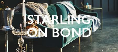 starlingonbond.jpg