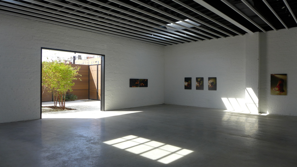 Sky Gallery, an intimate, raw space. Photo: Maryse Alberti.