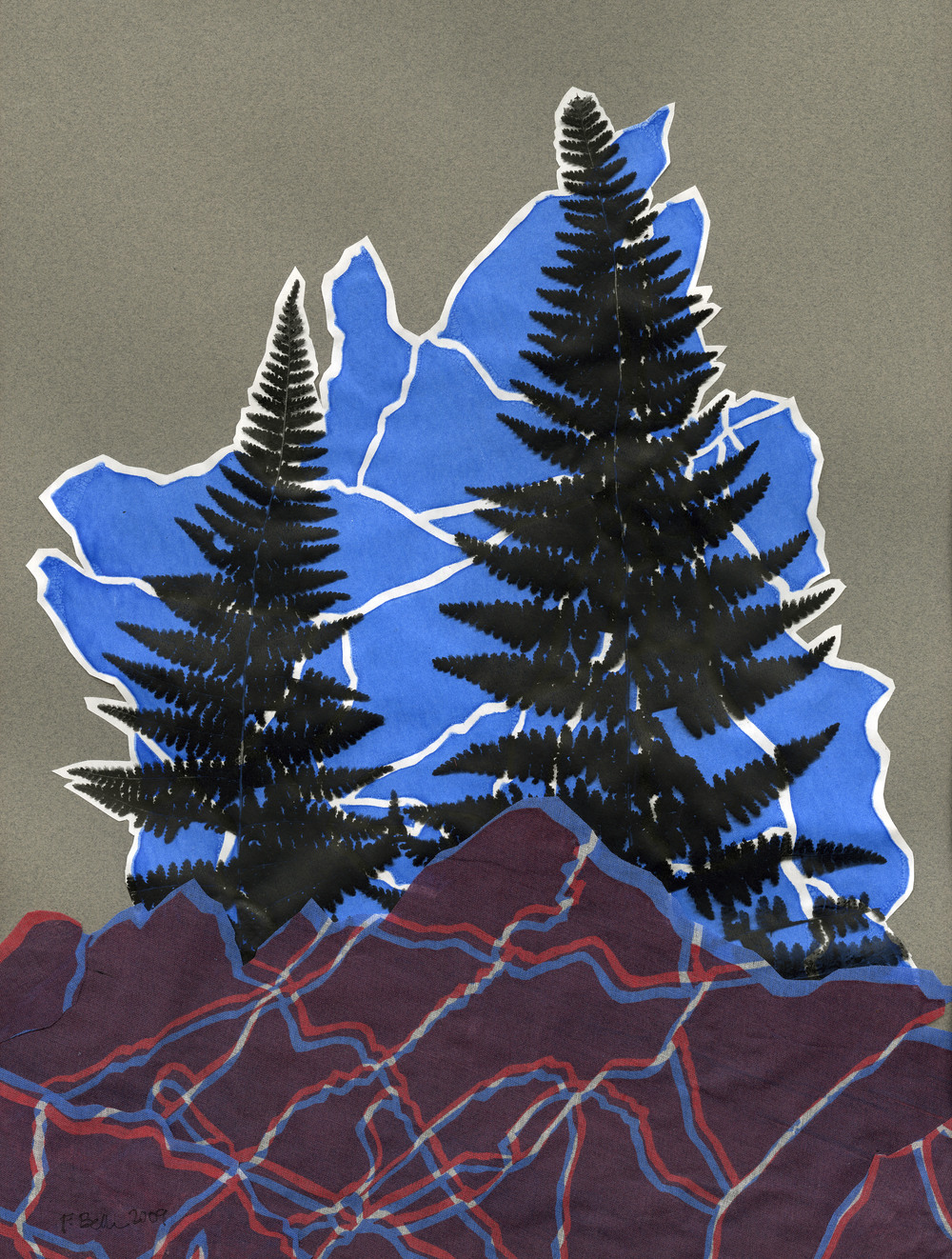 Hightop Mtn Fern.jpg