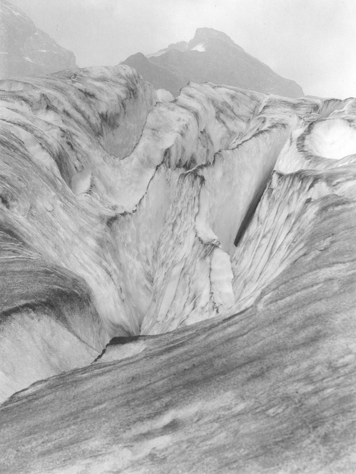collindavidbrown :     Illecillewaet Glacier, 1905
