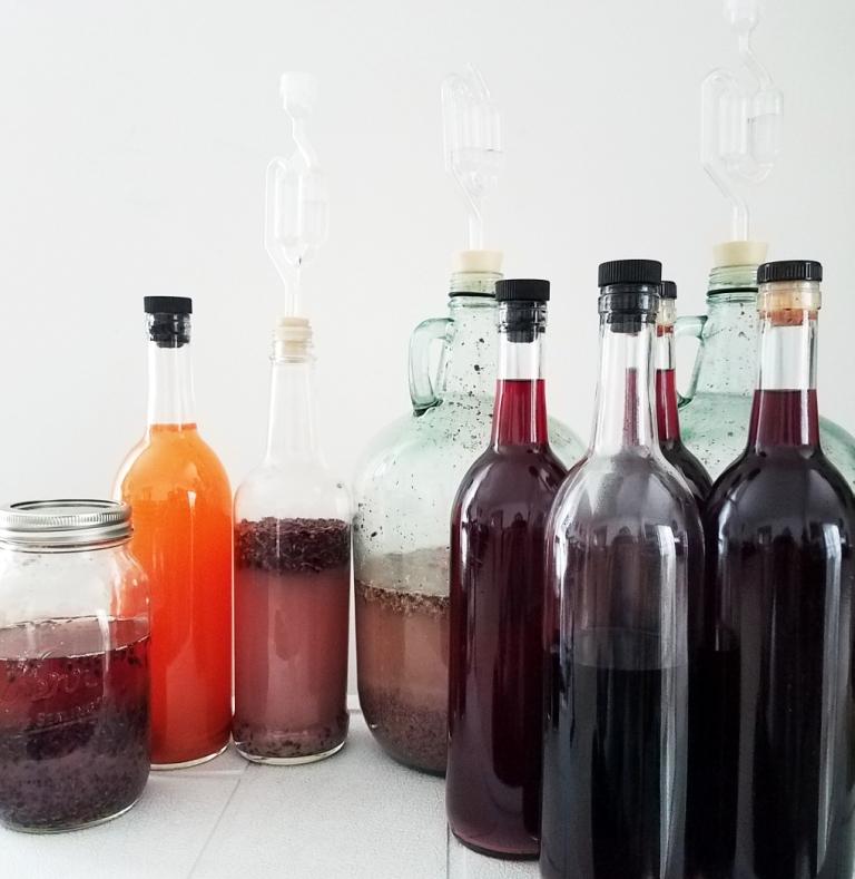 Ferments_Saccharifications.jpg