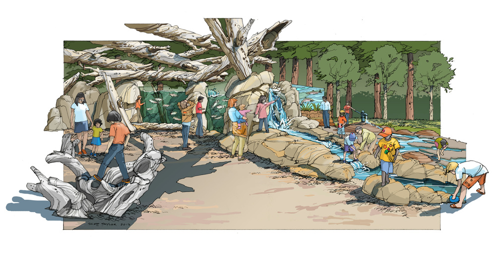 Salmon Exhibit-Final Color.jpg