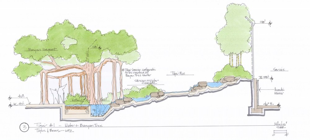 Early sketch of the Tiger Exhibit stream, pool, and Banyan Viewing Shelter
