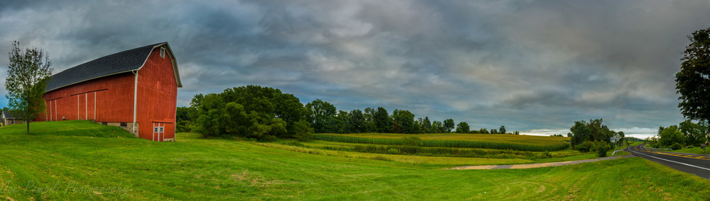 Pittsford Farm (Panoramic) #1P