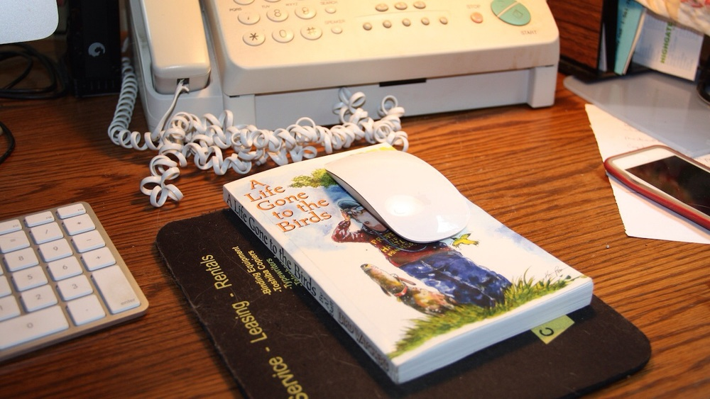 Ric McArthur found a use for my book. It makes a swell mousepad.