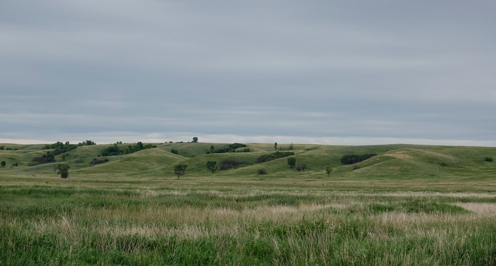 These North Dakota hills were no mountains to a high-stepping birder like me :>)