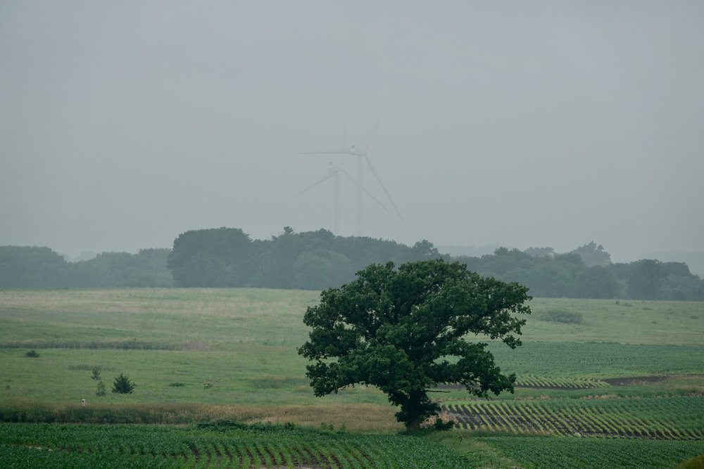 Even in the fog, the wind turbines were busily producing wind.