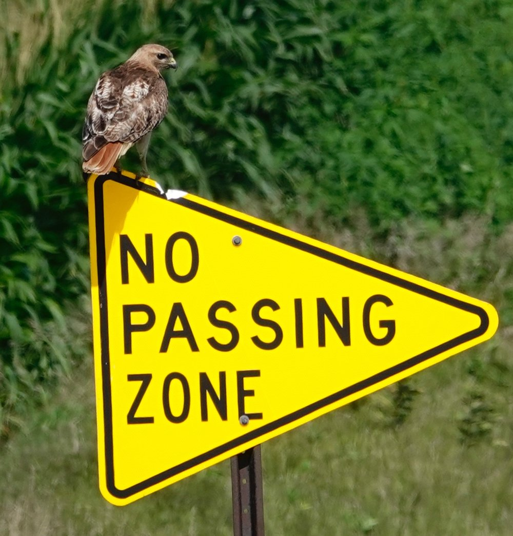 A part of Minnesota's plan to beautify its traffic signs.