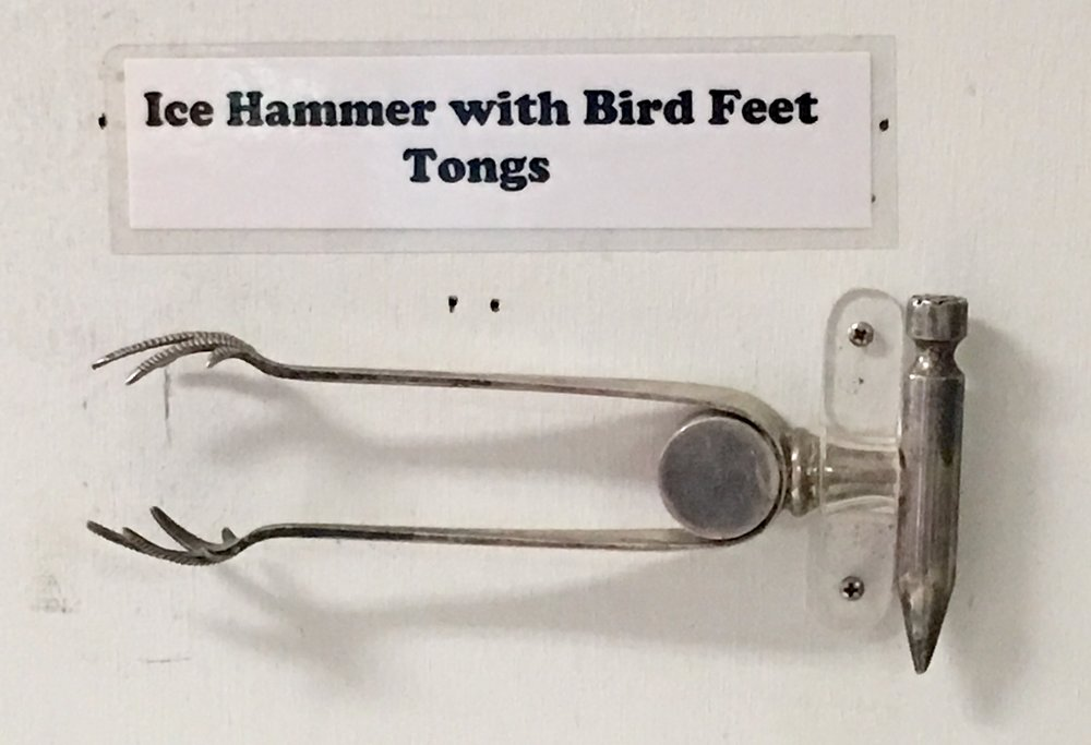 As seen at the Hammer Museum in Haines, Alaska.  Birding takes many forms.