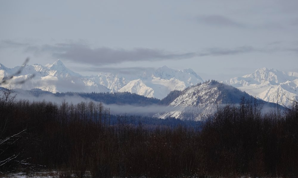 "John Muir said, ""How glorious a greeting the sun gives the mountains!""  These are in Haines, Alaska."
