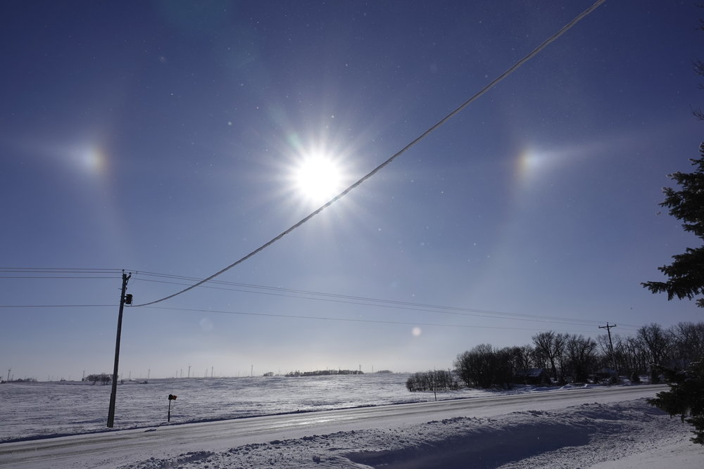 I went for a walk today and took the sundogs with me.