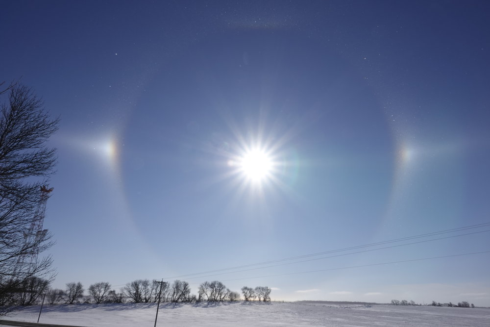 I went for a lovely walk on a -7 degree, sunny morning. I was accompanied by twittering juncos and barking sundogs.