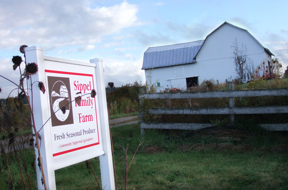 Click image to visit the Sippel Family Farm Website!