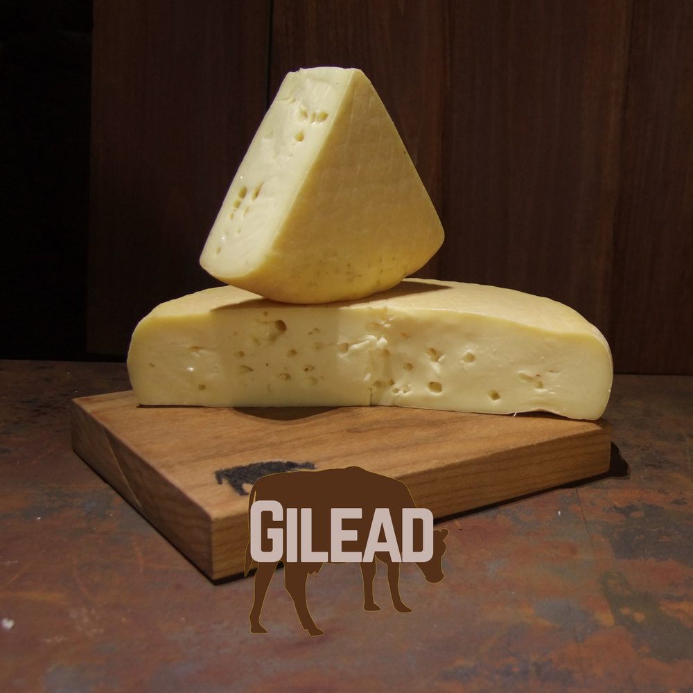 GileadSquare.jpg