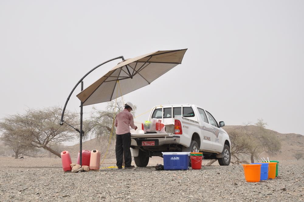 OmanShade.JPG