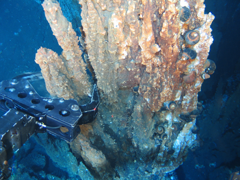 Canadian-Study-Toss-Doubt-on-Undersea-Mining-Prospects.jpg