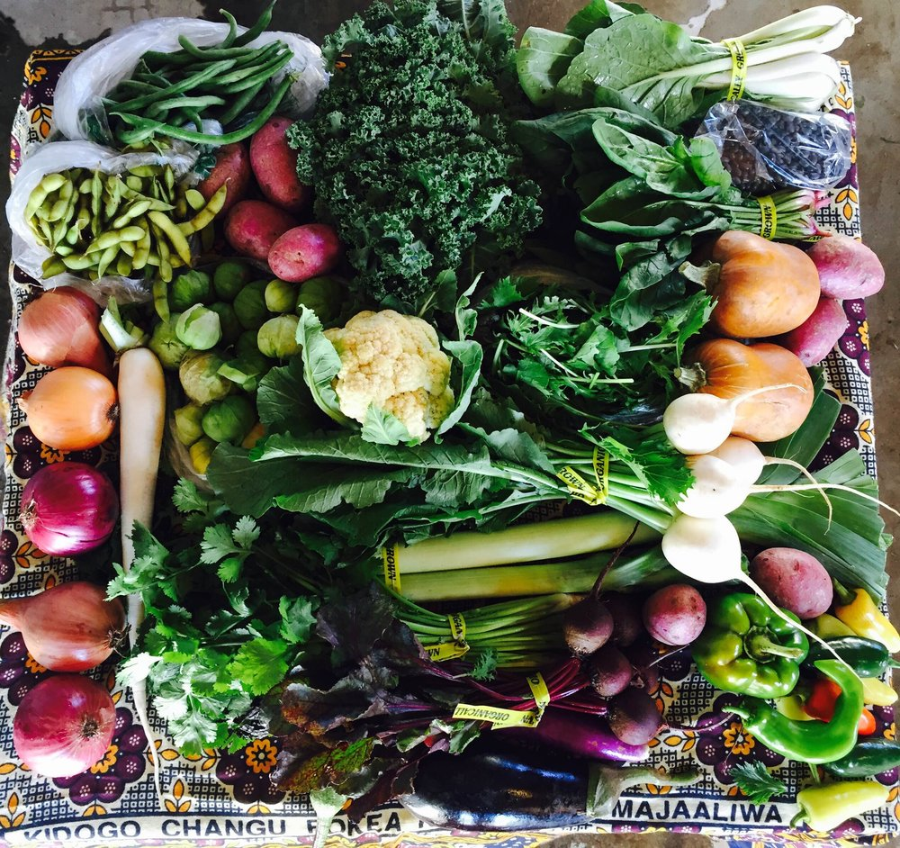 photo credit: Big River Farms CSA