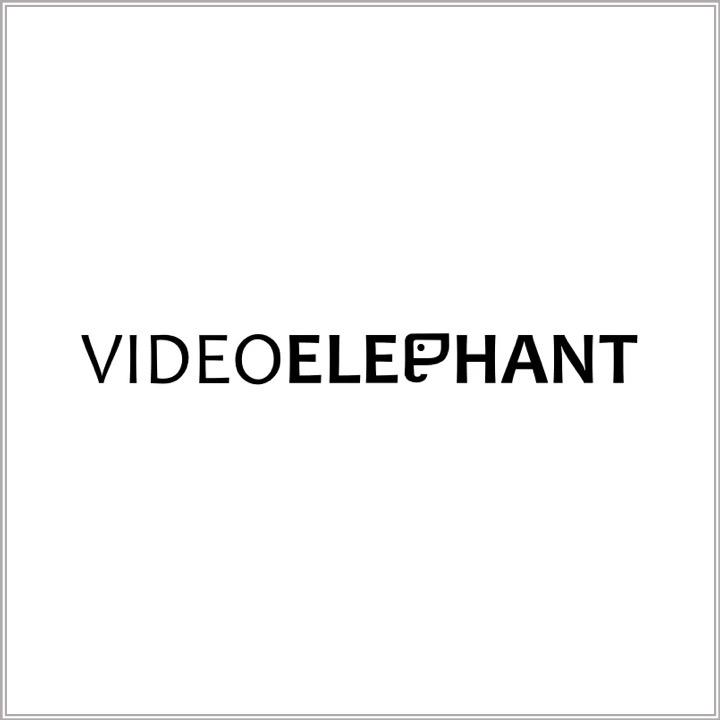 Video Elephant logo.jpg