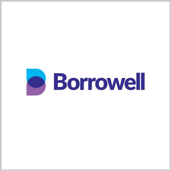 Borrowell logo.jpg