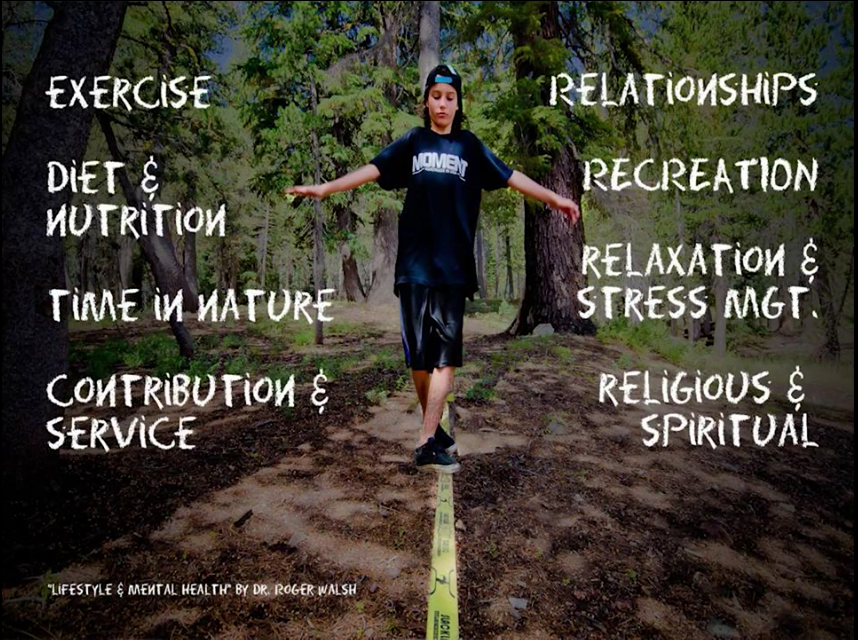The Eight Therapeutic Lifestyle Changes