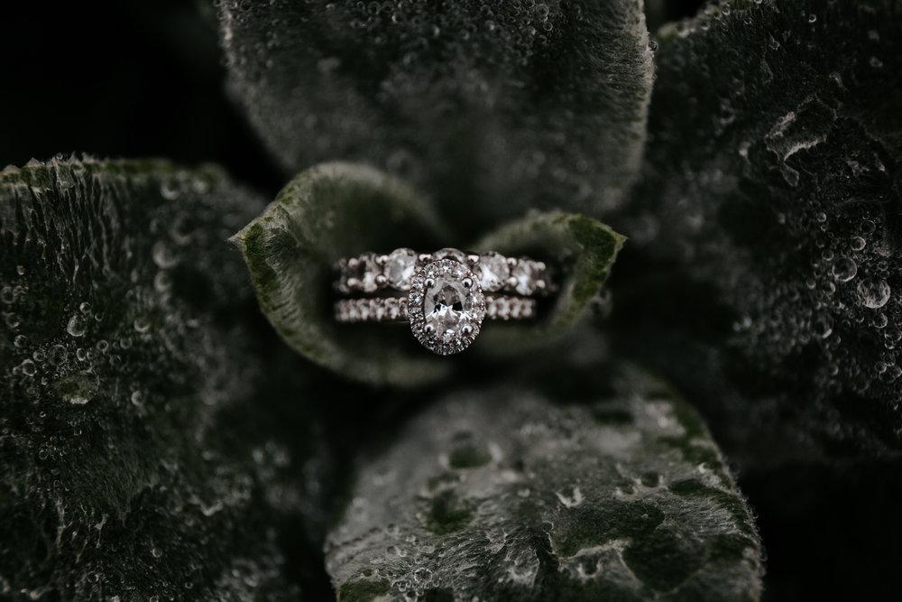 Miller Wedding-3.jpg