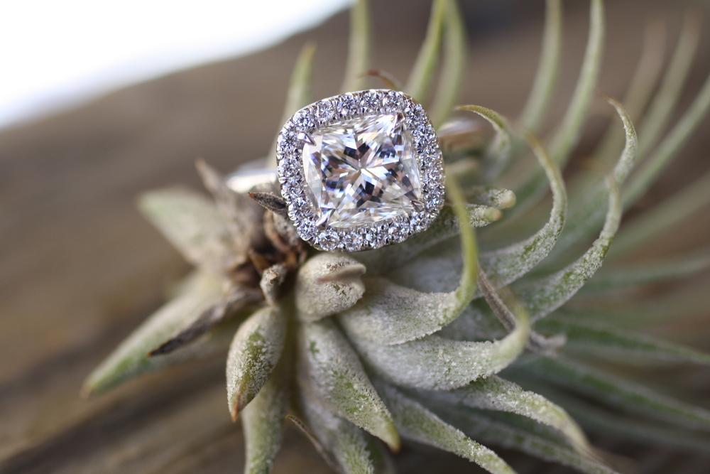 CC Diamond w Pave Halo SS Ring_18.JPG
