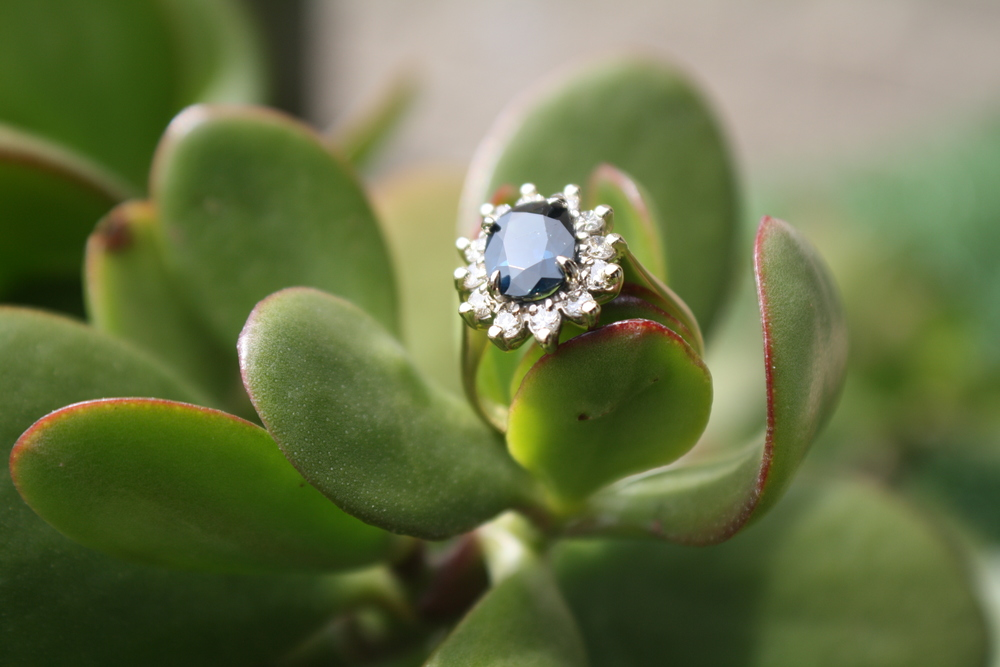 Tierra Novy and Michael Countryman Engagement Ring Diamond and Sapphire 'Flower' Ring_08.JPG