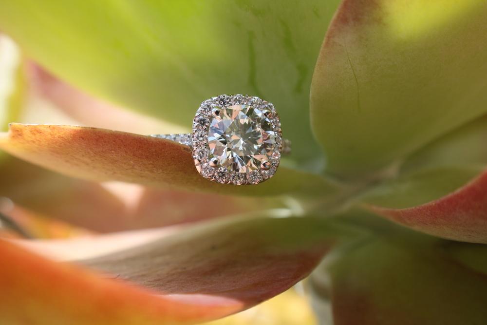 Karen Ann & James Johnson Engagement Ring_28 copy.JPG