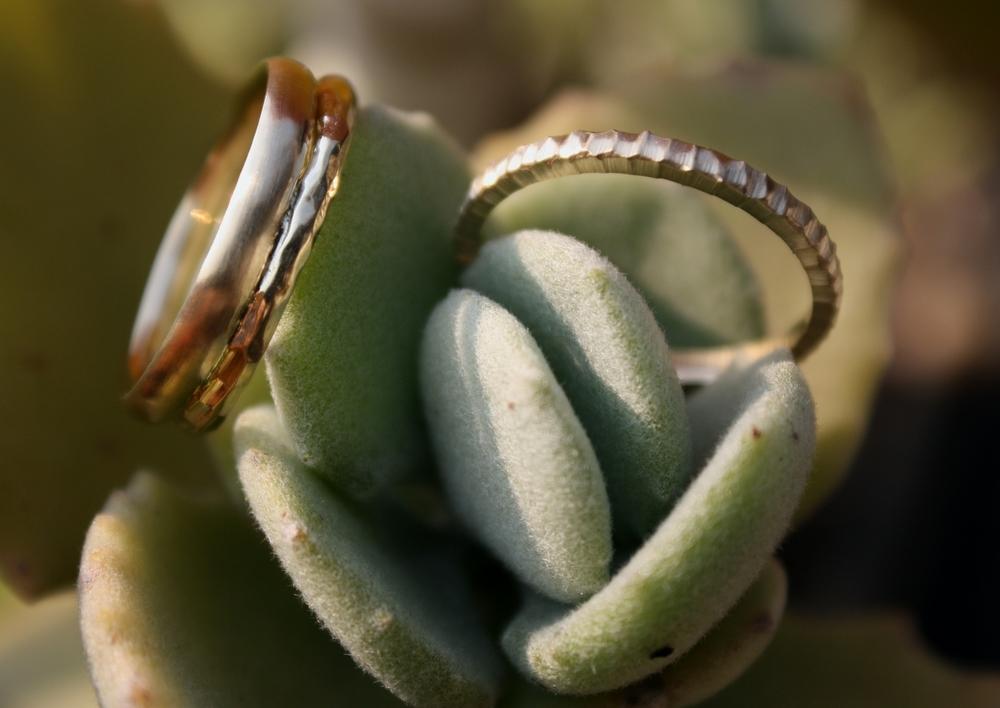 Lindsay Tucker & Ally Justman Yellow Gold Wedding Bands - Hammered & Satin_18.JPG