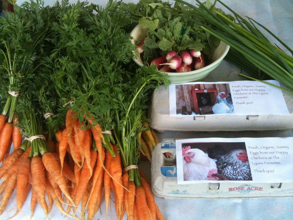 carrots-eggs.jpg