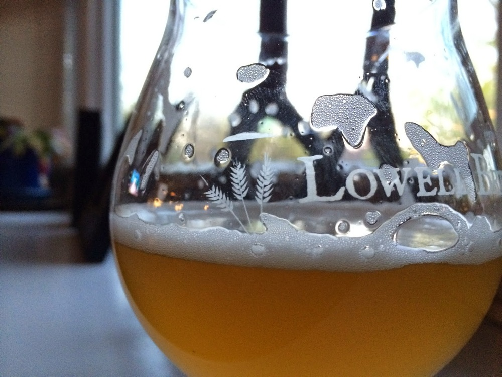 Lowell Brewing's American Saison in the glass.