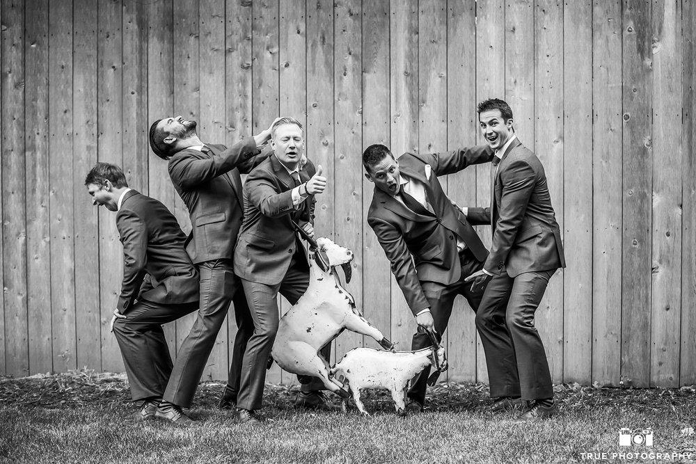 true-photography-lyons-farmette-colorado-wedding-venue-07.jpg