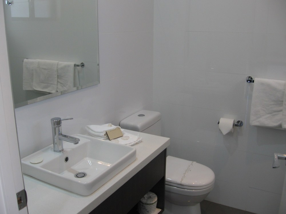 Ensuite with walk-in shower John Bright Motor Inn