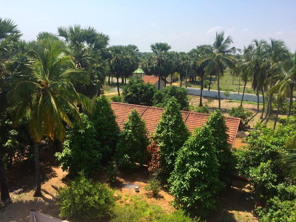 Sri Lanka Project - 01.JPG